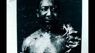 Muddy Waters - I Am The Blues Video