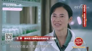 《生活圈》 20201005| CCTV - YouTube