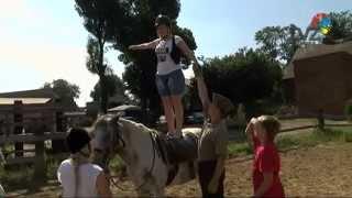 Warsztaty jeździeckie