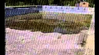 бассейн Локомотив Кишинев