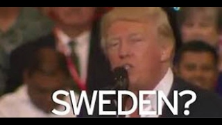 Swedes baffled by Trump's 'last night in Sweden' Fmr PM says 'what has Trump been smoking?'