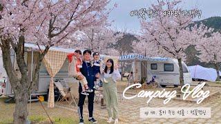 [카라반캠핑] ep 40. 봄이 주는 선물 : 벚꽃캠핑…