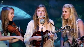 Wade in the Water - The Petersens (LIVE)