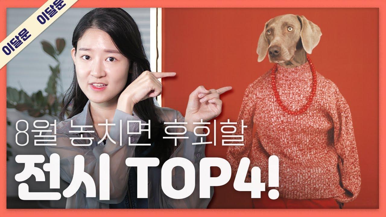 8월 한 달 동안 꼭 가볼만한 전시 TOP 4! + 관람 꿀팁! / 이 달의 문화예술