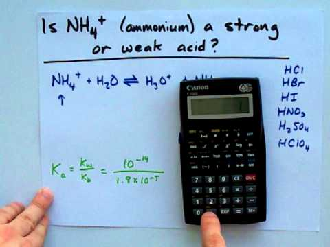 Is NH4+ a strong or weak acid (ANS: definitely weak ...