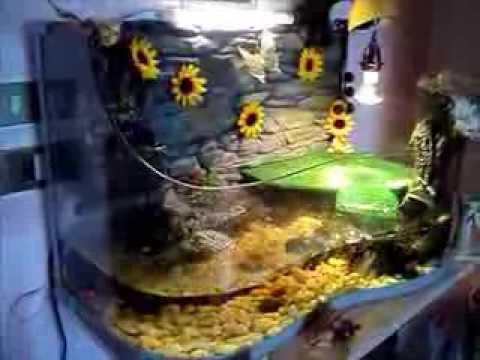 Acquario d 39 acqua dolce per tartarughe 150 l appena for Vasche da interrare per tartarughe