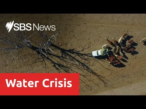 NSW Water Situation 'critical' Amid Warning Towns Could Run Dry Within Weeks