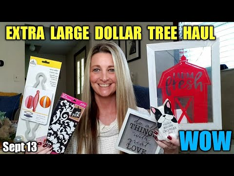 EXTRA LARGE DOLLAR TREE HAUL  AMAZING ITEMS | MUST SEE
