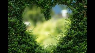 Created by videoshow:http://videoshowapp.com/free