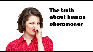 The truth about human pheromones