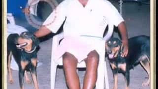 Repeat youtube video Paritala Ravi