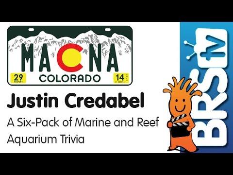 A six pack of marine and reef aquarium trivia by Justin Credabel | MACNA 2014