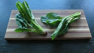 Creamed Spinach! Or Why Not Swiss Chard?