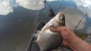 Фідер без понтів до змін погоди!!! Рибалка в межах міста р. Десна !
