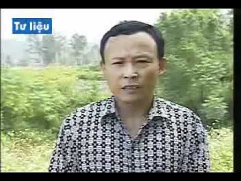 YouTube   HIEU QUA TU MO HINH NUOI GIUN DAT THAM CANH 02 wmv