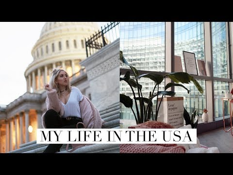 LIFE UPDATE | WHY I MOVED & STAYING IN THE US  | DC Diaries #8