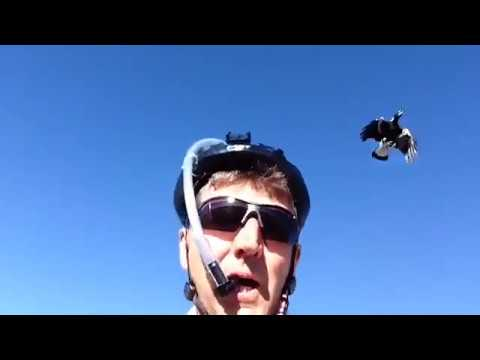 Cyclist Devises Helmet With Party Poppers To Fight Off Swooping Magpies