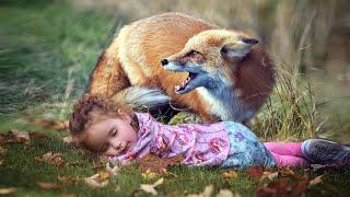 15 Wild Animals That Saved Human Lives