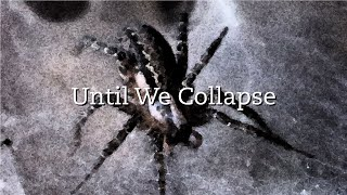4. Until We Collapse :: From the album – Spider :: by The Mad Poet