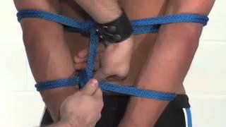 Lesson 12:  Arm Binder