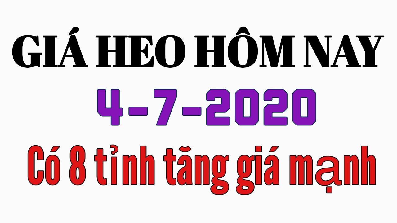 Giá heo hơi hôm nay ngày 4/7/2020   Nhiều tỉnh tăng giá mạnh trở lại