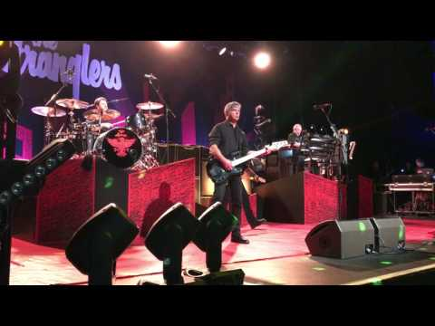 """The Stranglers """"Golden Brown"""" (Southend 23/03/2017)"""