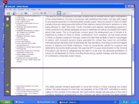 Screen Capture: Targeted Attack PDF Exploit Taking Over A Computer