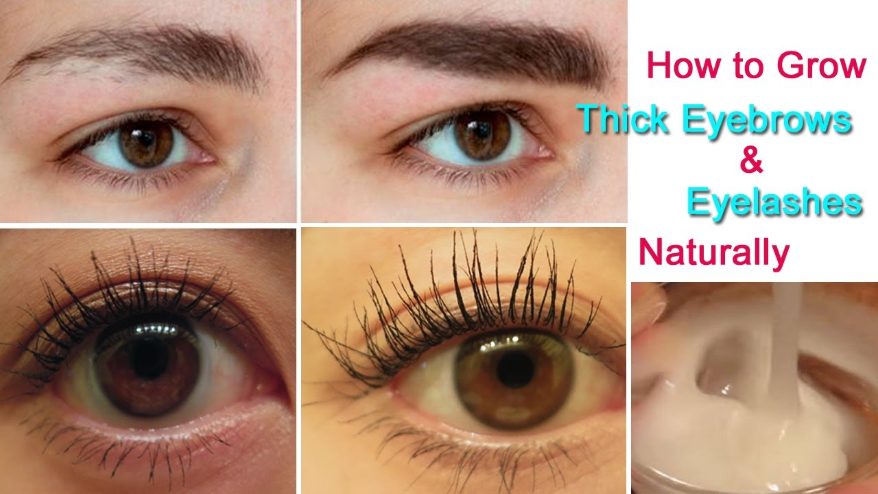 How To Grow Thick Eyebrows And Eyelashes Naturally Eyelash And