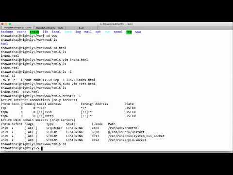 Unix Web Servers (nginx and apache)