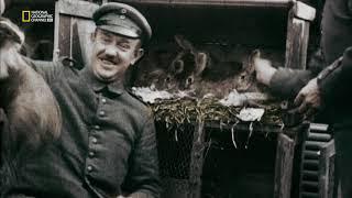 Первая мировая война в цвете HD серия #3 Ад