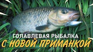 Голавлевая рыбалка с новой приманкой Тестирую воблер на малой реке
