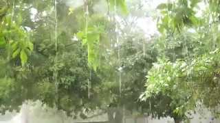 HAIL STORM INDIA- NATURAL CALAMITY-HEAVY RAIN-HAIL STONES
