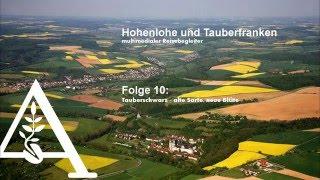 Hohenlohe und Tauberfranken - Folge 10: Tauberschwarz - alte Sorte, neue Blüte
