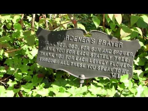 1686 Pickens Highway; Rosman North Carolina HD