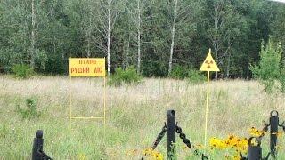 Что будет если проехать через рыжий лес?(Сегодня видео совсем не большое, зато интересное. Что же будет если проехать через рыжий лес? А ничего, тольк..., 2014-08-28T20:30:05.000Z)
