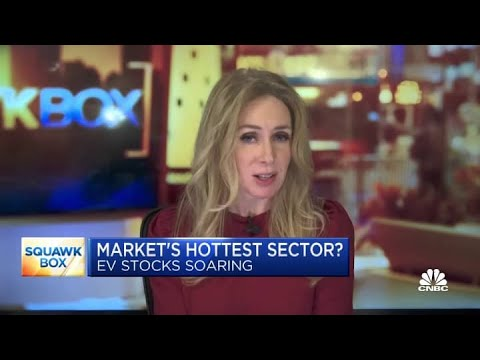 Two EV pros on whether the sector is overvalued