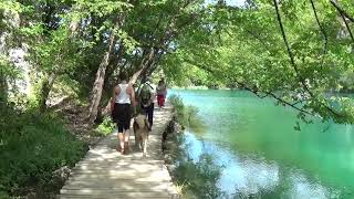 Plitvice Alsó Tavak - Lower Lakes Croatia  2017