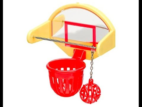 How to make your own budgie basketball hoop youtube for How to build a basketball goal