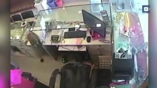 Обезьяна ограбила ювелирный магазин в Индии