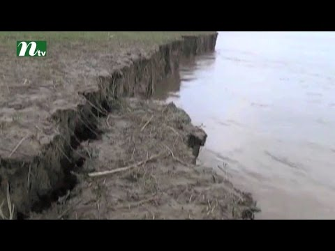 Severe river erosion in Faridpur district  | News & Current Affairs