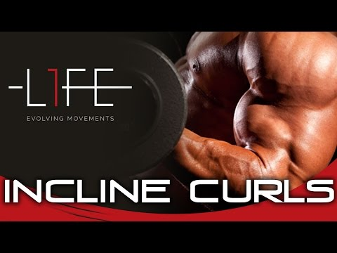 Bessere BIZEPS GAINS durch INCLINE CURLS?! | Besuch im L1FE - Evolving Movements