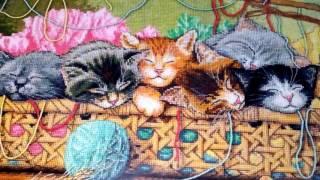Апрель - месяц стартов. 29-30 апреля. Лунный кот подушка (Риолис)/Новорожденные котята (Dimensions)