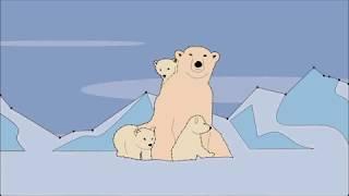 Kids Funny Drawing (Polar Bear)