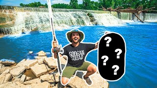 GIANT SPILLWAY Fishing for MYSTERY SPECIES!!! (CATCH CLEAN COOK)