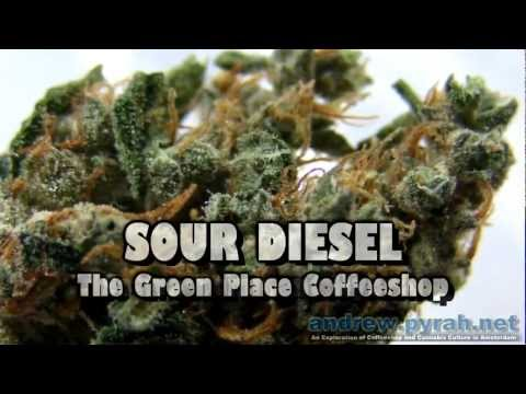 SOUR DIESEL The Green Place Coffeeshop - Amsterdam Weed Review