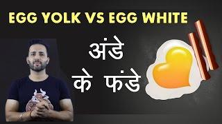 Egg Yolks Vs Egg Whites | अंडे का कौन सा भाग खाना चाहिए