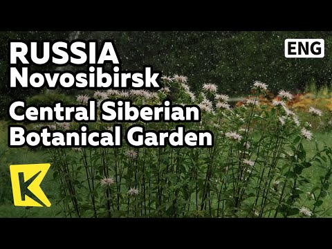 【K】Russia Travel-Novosibirsk[러시아 여행-노보시비르스크]아카뎀고로도크, 중앙시베리아식물원/Akademgorodok/Botanical Garden