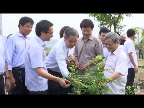 Phó Thủ Tướng Vũ Đức Đam về thăm Trang trại Rau An Toàn của CT Hương Việt Sinh