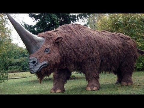 10 Animales Extintos