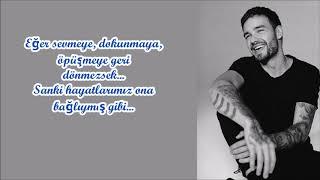 Liam Payne – Depend On It (Türkçe Çeviri)